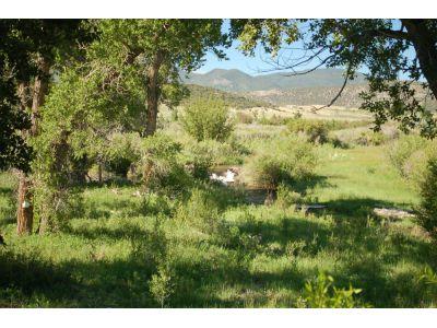 Real Estate for Sale, ListingId: 33746891, Gardner,CO81040
