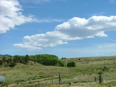 373 Deer Springs Cir, Westcliffe, CO 81252