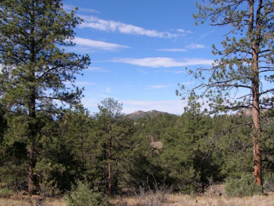 Photo of 4278 County Road 265  Westcliffe  CO