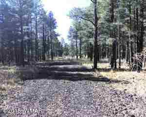 Lots A-D Thunderhorse Road, one of homes for sale in Pinetop-Lakeside
