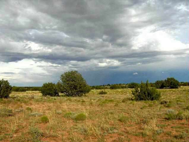 Image of  for Sale near Overgaard, Arizona, in Navajo County: 38.07 acres