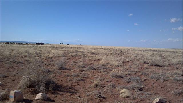 Image of  for Sale near Overgaard, Arizona, in Navajo County: 36.36 acres