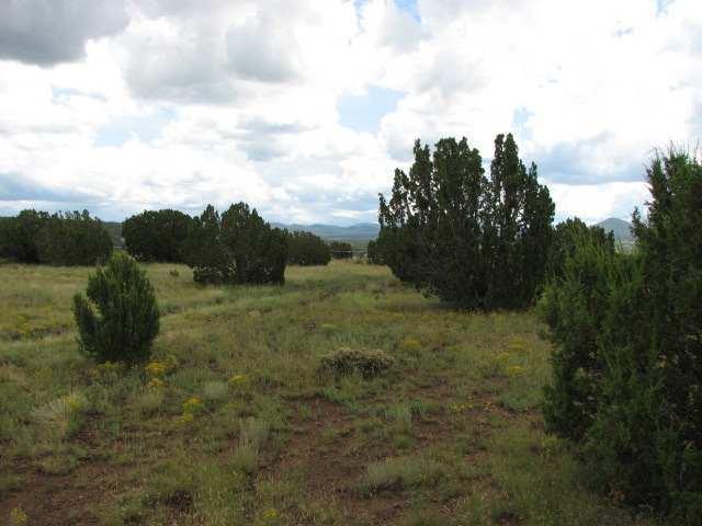 primary photo for unk Cedar, Vernon, AZ 86040, US