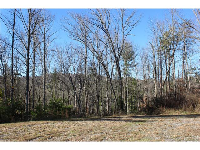 10.08 acres Leicester, NC