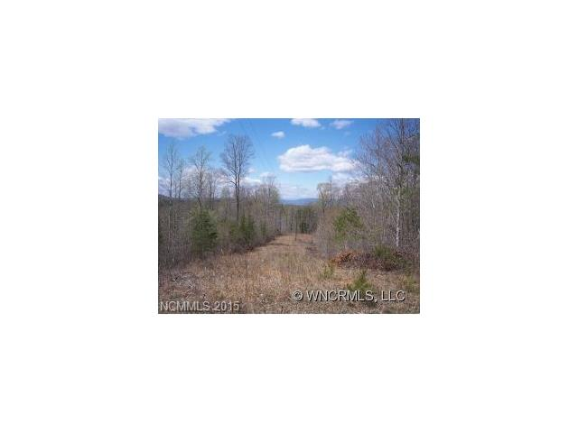 Abrams & Moore Rd, Mill Spring, NC 28756