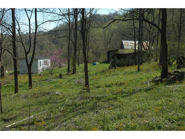 Photo of 4208 Meadow Fork Road  Hot Springs  NC