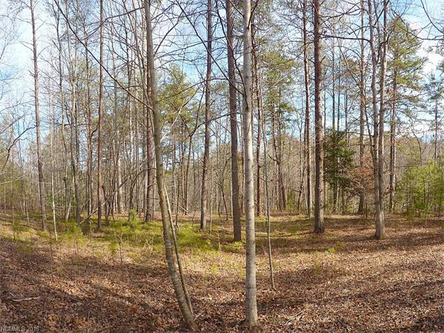 Lake Adger Pkwy, Mill Spring, NC 28756