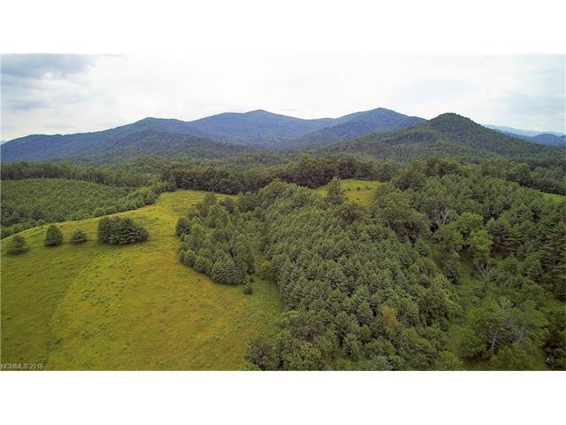 1364 Long Branch Rd, Green Mountain, NC 28740