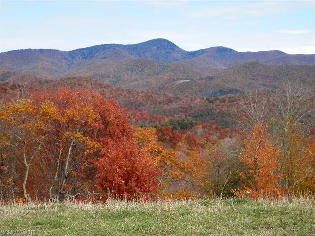 772 Neddie Mountain Rd, Tuckasegee, NC 28783