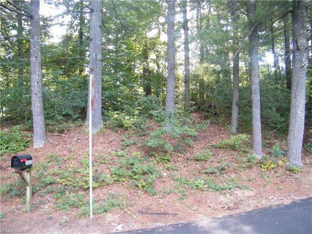 999999 Upper Ridgewood Boulevard 498/499, Hendersonville in Henderson County, NC 28792 Home for Sale