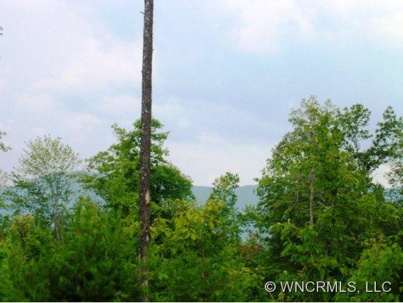 2 Rock Ridge Rd, Mill Spring, NC 28756
