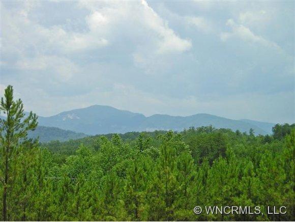 Ashley Ct, Mill Spring, NC 28756
