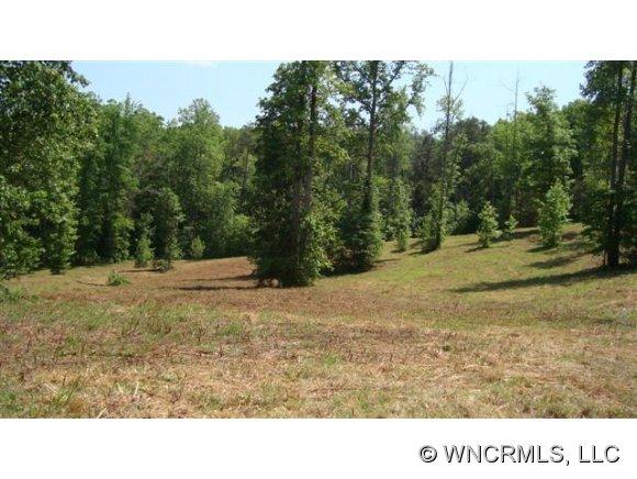 White Oak Ln, Tryon, NC 28782