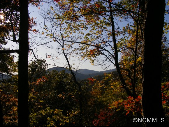 79.48 acres in Black Mountain, North Carolina