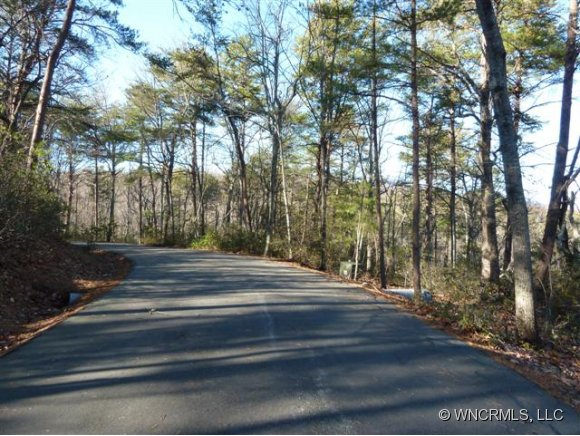 Willow Ln, Columbus, NC 28722