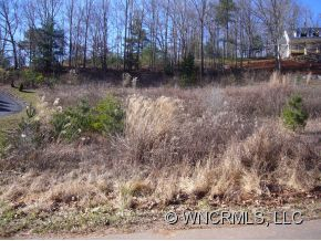 primary photo for Lot 128 FARM VALLEY COURT, Weaverville, NC 28787, US