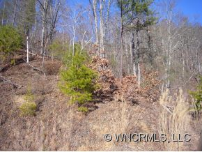 primary photo for Lot 138 WHITFIELD LANE, Weaverville Mad, NC 28787, US