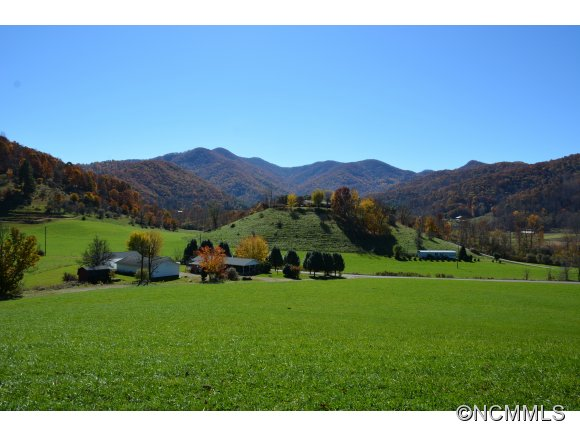 700 acres in Barnardsville, North Carolina