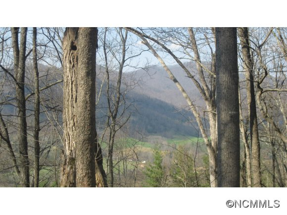 primary photo for 110 Parker Cove Rd, Weaverville, NC 28787, US