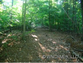 primary photo for 00 Beaverdam Road (Lots 1 & 2), Asheville, NC 28804, US