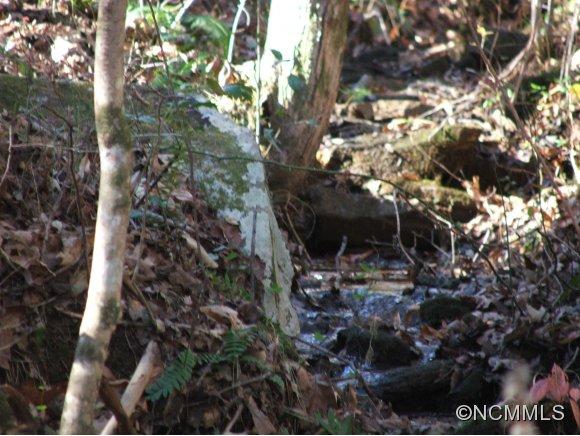 Grassy Knob Rd, Mill Spring, NC 28756