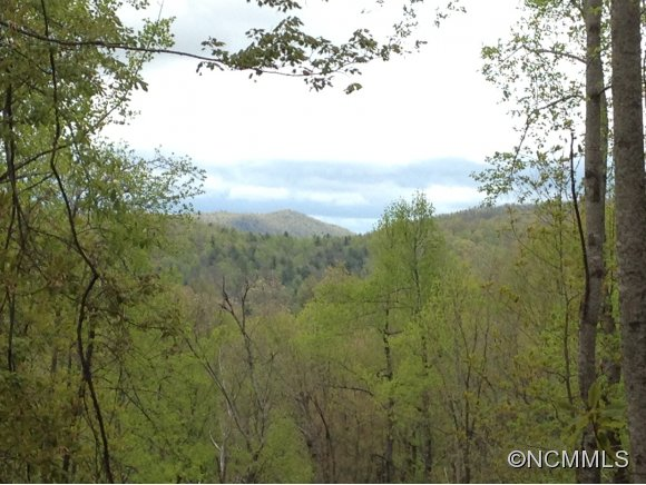 0 Reasonover/Solomon Jones Road, Cedar Mountain, NC 28718
