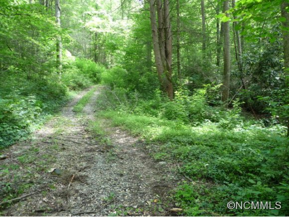 106.73 acres in Robbinsville, North Carolina