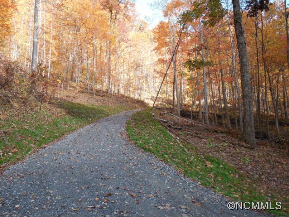 72.63 acres in Robbinsville, North Carolina