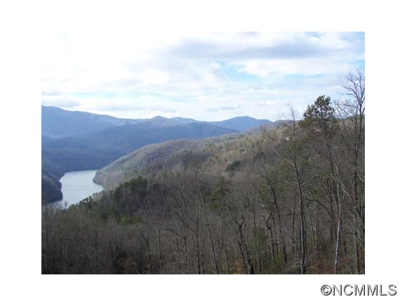 969 acres in Robbinsville, North Carolina