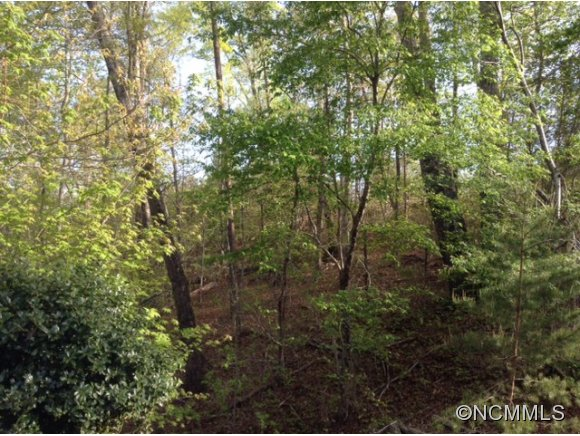 N Mountain Ln, Mill Spring, NC 28756