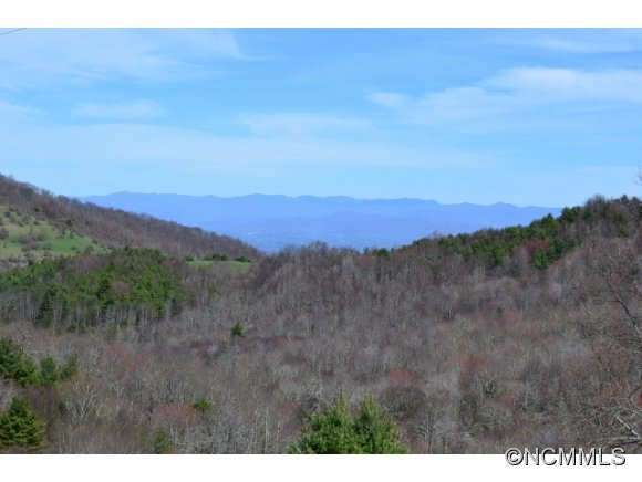 800 Doggett Gap Rd, Hot Springs, NC 28743