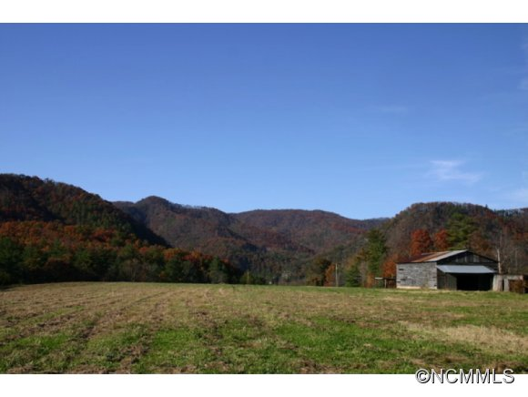 1295 Paint Rock Rd, Hot Springs, NC 28743