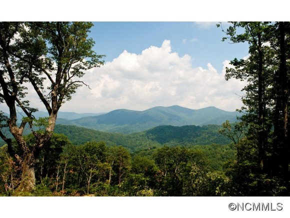 93.88 acres by Weaverville, North Carolina for sale