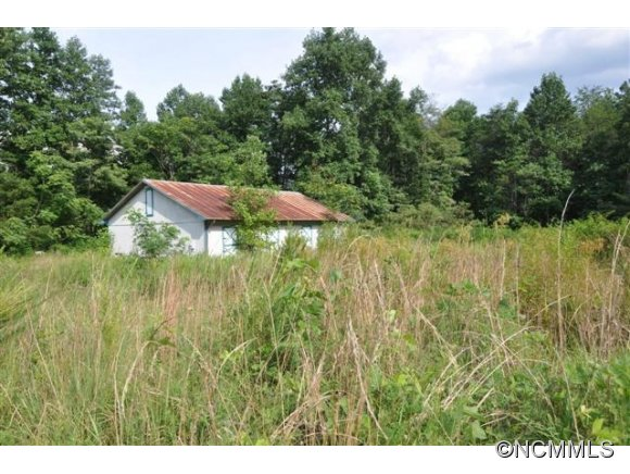 1401 Laughter Rd, Mill Spring, NC 28756