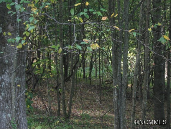 1656 Grassland Pkwy, Marshall, NC 28753