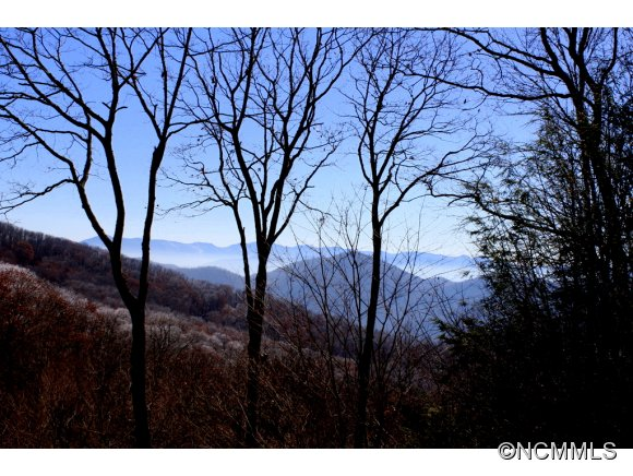 Grouse Thicket Ln, Mars Hill, NC 28754