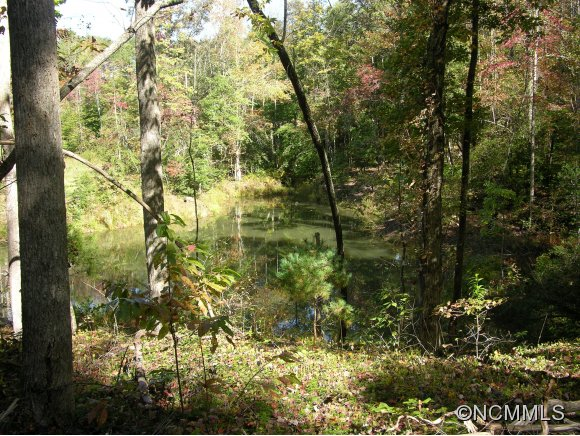 Womack Rd, Mill Spring, NC 28756