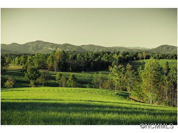 Aden Green Rd, Mill Spring, NC 28756