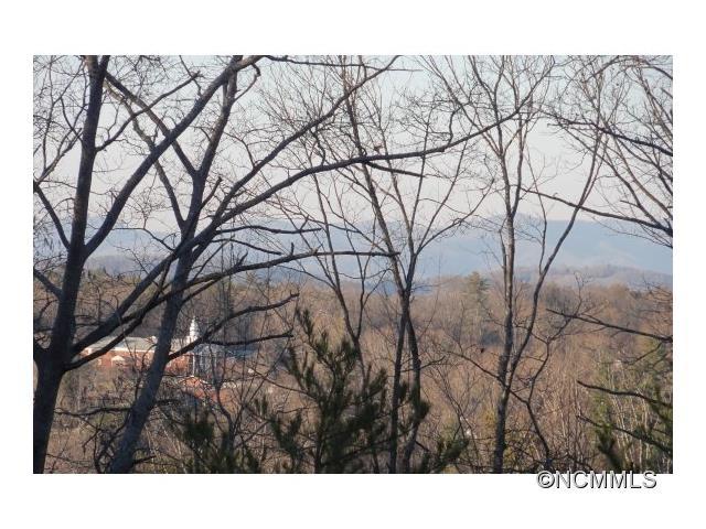 44 Timber Moss Dr, Asheville, NC 28804