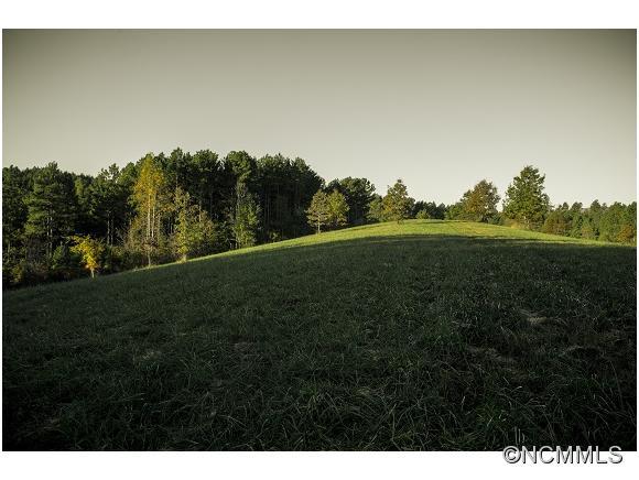 Blanton Rd, Mill Spring, NC 28756
