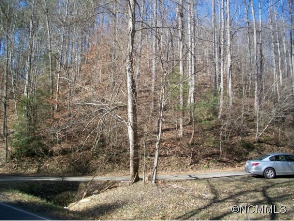 Walnut Creek Rd, Marshall, NC 28753