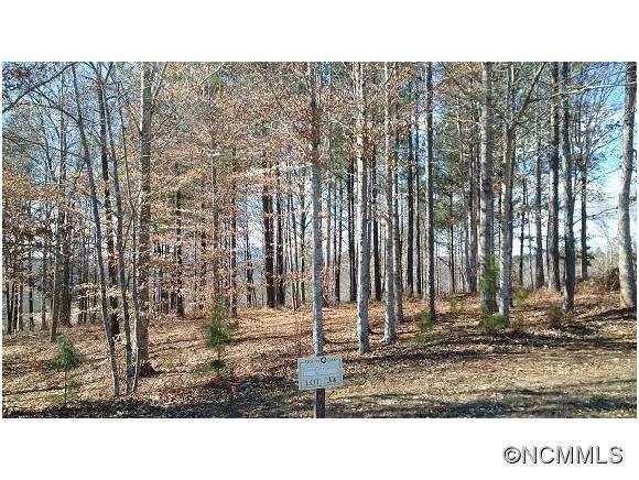 Overmountain Trce, Mill Spring, NC 28756