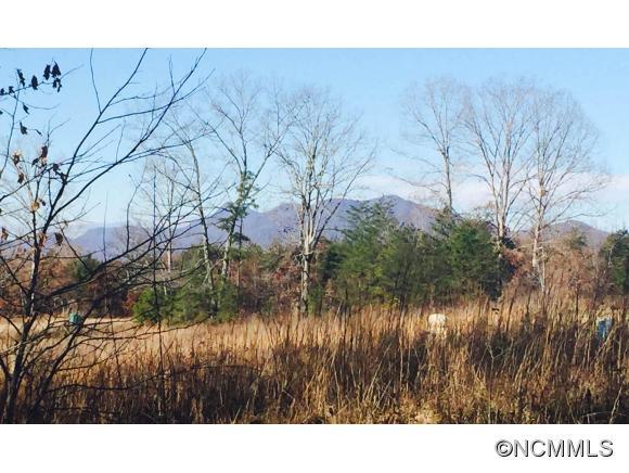 3182 Pea Ridge Rd, Mill Spring, NC 28756