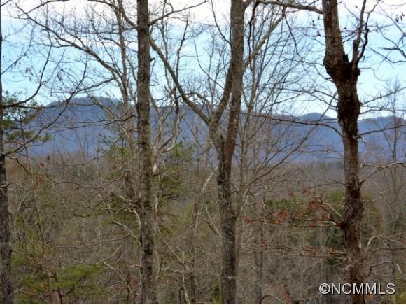 N Coast Dr, Mill Spring, NC 28756
