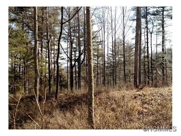 1.53 acres Brevard, NC