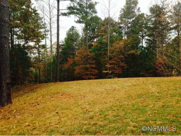 River Trace Ln, Mill Spring, NC 28756