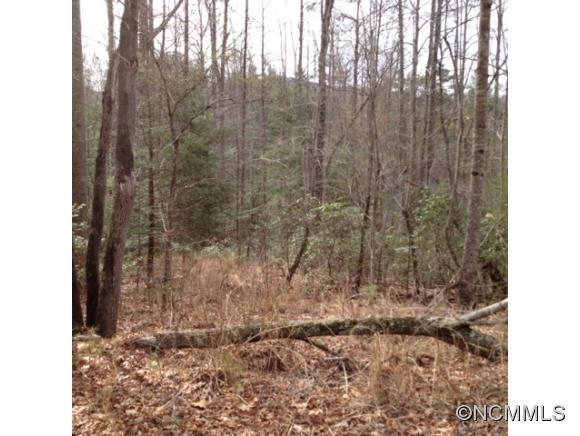 Deep Woods Ln, Saluda, NC 28773