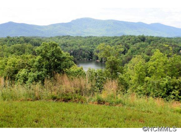 Jackson Cv, Mill Spring, NC 28756