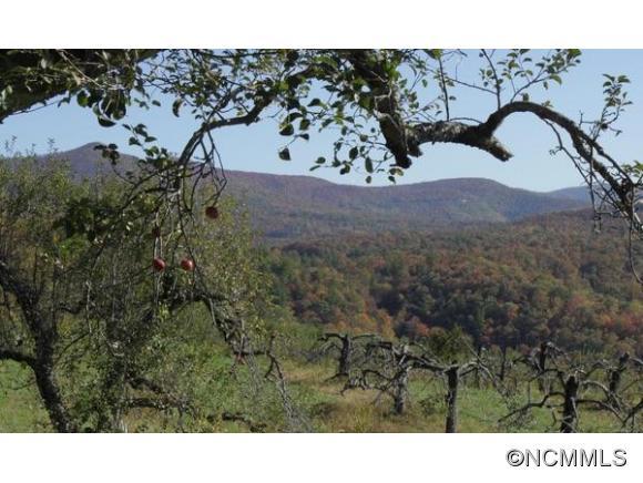 77 acres Spruce Pine, NC