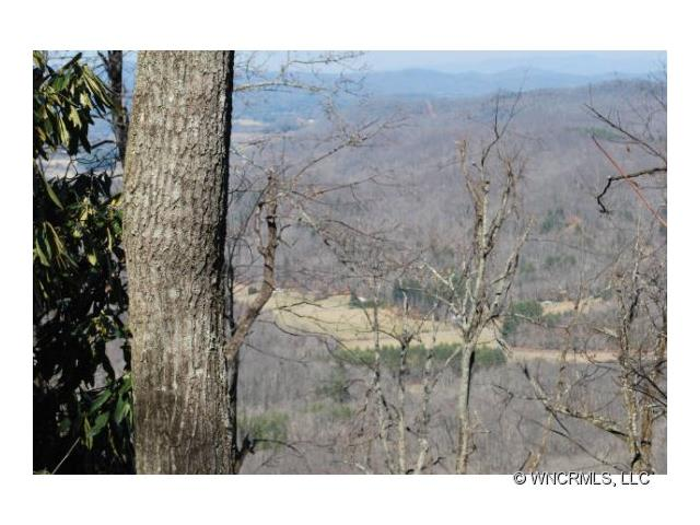 Image of Acreage for Sale near Brevard, North Carolina, in Transylvania County: 130 acres